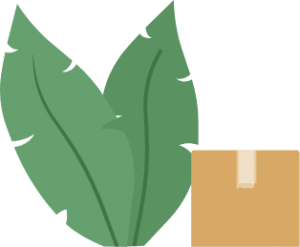 leaves and box